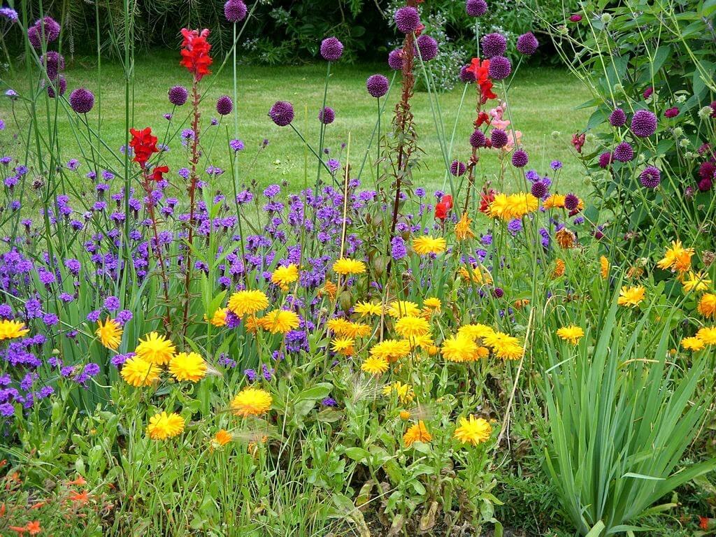 Killing weeds in flower beds - What Is The Best Weed Killer For Flower Beds Homewares Insider